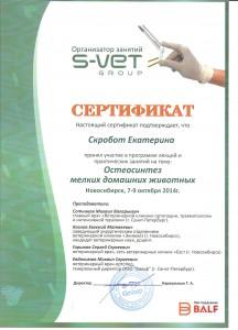 Остеосинтез Скробот