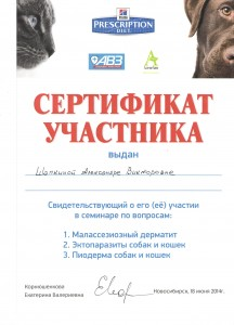 Сертификат Шапкина