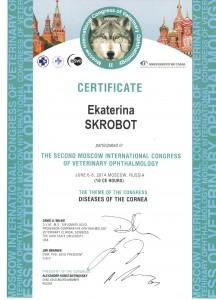 Сертификат по офтальмологии Скробот Е. В.
