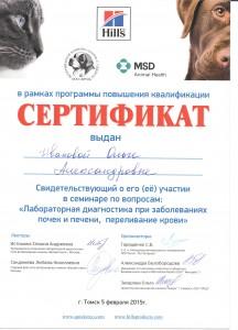Иванова Сертификат